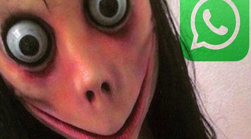 momo de whatsapp