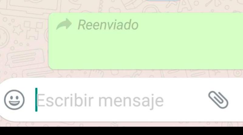 Reenviar WhatsApp